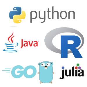 Multiple programming languages are supported